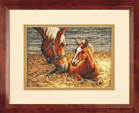 Набор для вышивания Dimensions 70-65119 Good Morning (Horse and Foal) Cross Stitch Kit