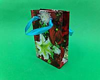 Пакет-Упаковка Бумажный Подарочный МИНИ 8*12*3.5(12 шт)с Рисунком Ручками Ламинацией Плотный Глянцевый