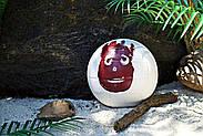 М'яч волейбольний ігровий Wilson Cast Away Volleyball оригінал, фото 5