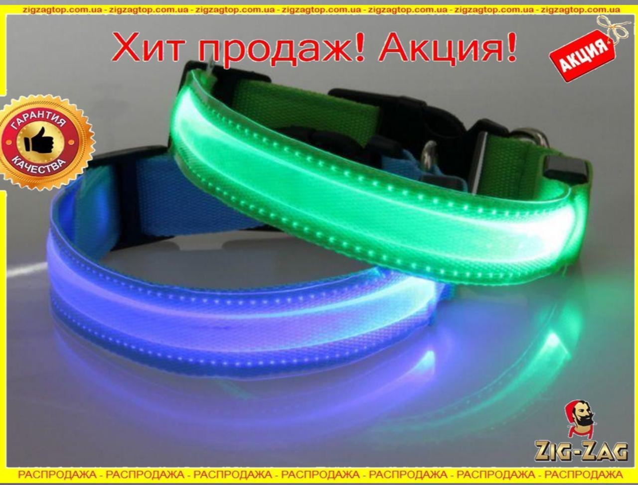 Нашийник LED Світиться ДЛЯ Собак і Кішок 0.5 м Собаки повідець Нашийники світло 3 режиму з Підсвіткою й з Нейлону