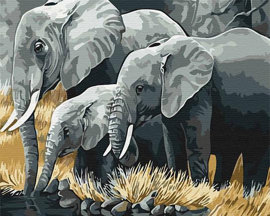 """Картина за номерами """"Сім'я слонів"""", фото 2"""