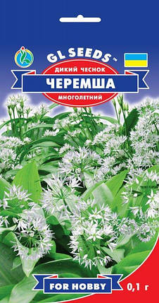 Черемша дикий часник, пакет 0,1 г - Насіння зелені і прянощів, фото 2
