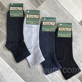 Шкарпетки чоловічі бавовна з сіткою середні Житомир, розмір 27-29, асорті, 02802