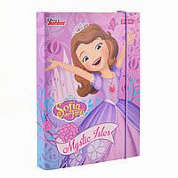 Папка для тетрадей картонная для девочки