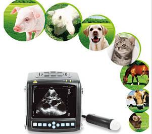 Ветеринарное Оборудование Для Животных