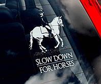 Конный спорт, наездники, лошади Equestrian