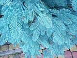 """Елка """"Премиум"""" искусственная литая голубая, пышная густая, 250 см, с подставкой, в коробке 031-0047, фото 2"""