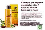 Шампунь для жирного волосся Sano Tint Швейцарія, фото 3