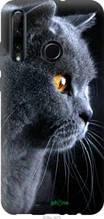 "Чехол на Huawei Honor 20 Lite Красивый кот ""3038c-1832-2448"""