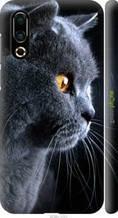 """Чохол на Meizu 16S Красивий кіт """"3038c-1701-2448"""""""