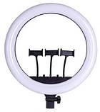 Кільцева лампа 45 см зі штативом на 2.1 м для телефону селфи кільце, фото 2