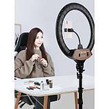Кільцева лампа 45 см зі штативом на 2.1 м для телефону селфи кільце, фото 5