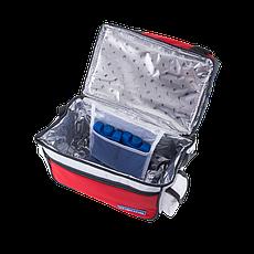 Ізотермічна сумка Thermo Style 10 (IBS-10) для продуктів і напоїв, фото 3