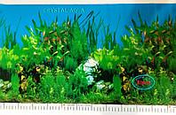 Фон №9013 для аквариума с высотой 60 см