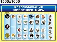 Классификация живых организмов. Стенд для кабинета биологии