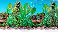 Фон №9011 для аквариума с высотой 30 см