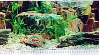 Фон №9023 для аквариума с высотой 30 см