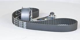 Ремінь, ролики ГРМ (комплект) ГРМ AUDI, SEAT (виробництво Ina) (арт. 530 0201 10), AGHZX