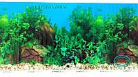 Фон №9031 для акваріума з висотою 30 см