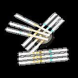 Тест-полоски для анализа мочи Urine 10T (100штук) (10 параметров), фото 2