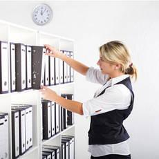Услуги по трудоустройству и подбору персонала, общее