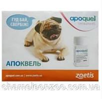 Апоквель 5,4 мг 10 таб (Оригінал Zoetis США) в конверті.
