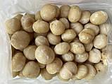 Макадамия очищенная, 300 грамм, фото 2