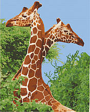 Картина по номерам  Пара жирафов 40х50 см 11613-AC Art Craft