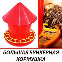 Бункерная кормушка для недельных перепелов (перепелят, бройлеров, цыплят)