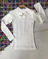 Шкільна блузка 9-12 років для дівчаток Туреччина оптом