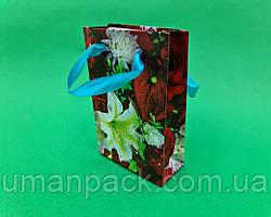 Пакет паперовий МІНІ 8*12*3.5 арт06 (12 шт)