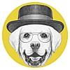 Зоомагазин Шиншилка - Дискаунтер зоотоваров.Корма для кошек и собак. Ветаптека. Бесплатная доставка