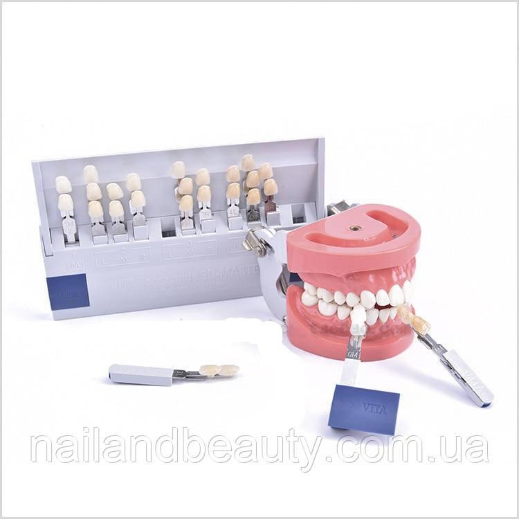 1 комплект, відбілюючі зубні напрямні для відбілювання зубів, 29 кольорів