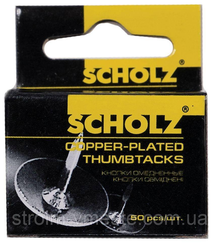 Кнопки канцелярские никелированные SCHOLZ 4831 50 шт