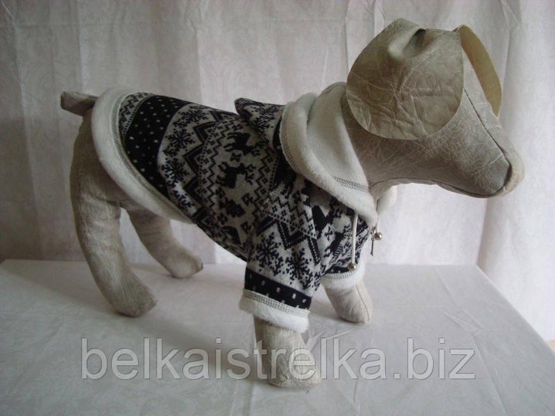 Толстовка для собак Зима такса (47х56)