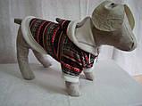 Толстовка для собак Зима такса (47х56), фото 2