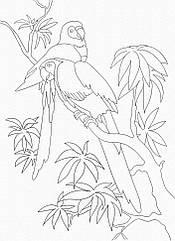 """Роспись на холсте. Art Craft """"Попугаи"""" 25х30 см 15507-AC"""