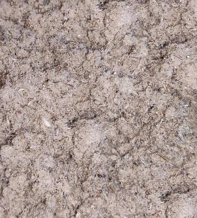 Сублимированное пюре з комах ( домовик цвіркун ) для: рептилій, їжаків, мурах, птахів, гризунів