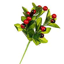 Фруктовая ветка с красными ягодами