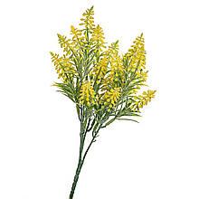 Декоративна зелень, жовті квіточки