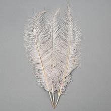 Страусове перо 55 см світло-сірий