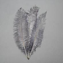 Страусиное перо 55 см темно-серый