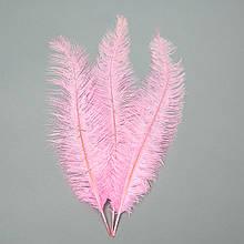 Страусиное перо 55 см розовый
