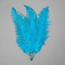 Страусове перо 55 см блакитний