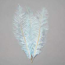 Страусове перо 55 см світло-блакитний