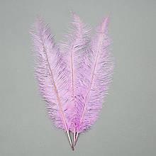 Страусове перо 55 см світло-фіолетовий