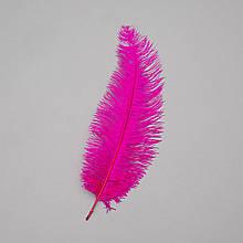 Страусове перо 25-30 см яскраво-фіолетовий