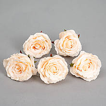 Головка троянди 6 див. *рендомний вибір кольору