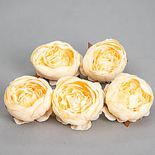 Головка піоновідної троянди 5 див. *рендомний вибір кольору
