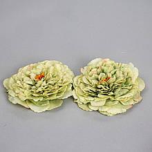 Головка піоновідної троянди 2 див. *рендомний вибір кольору